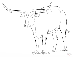 texas longhorn coloring page free printable coloring pages