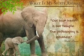 quotes about heart strength elephant quotes u0026 sayings animal quotes u0026 sayings