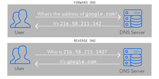 Dns Lookup How A Domain by What Is Reverse Dns And Why Should You Care Leadfeeder