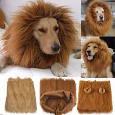 lion dogs dog lion costume ebay