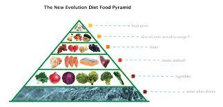 finally a real paleo food pyramid nell stephenson paleo