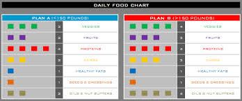 Beast Meal Plan Spreadsheet Insanity Max 30 Nutrition Plan Simple Rippedclub