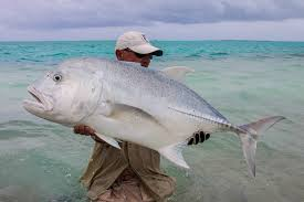 fly fishing in christmas island sportquest holidays