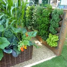 vegetable gardening in small spaces image architectural home