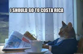 Costa Rica Meme - i should go to costa rica sophisticated cat quickmeme