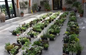 how tower hill plants a vertical garden wall tower hill botanic