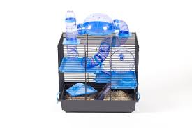 How Much Is A Hamster Cage Taking Care Of Pet Hamsters Won U0027t Be Difficult Anymore See How