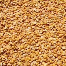 free images farm seed bean ripe environment food
