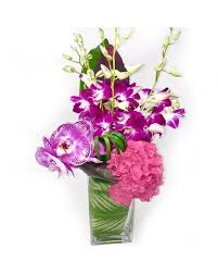 baby flowers new baby flowers delivery nyc starbright floral design