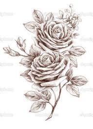 roses sketch google search tatts pinterest tattoo tatoos