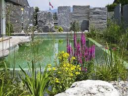 Natural Swimming Pool 29 Best Natural Swimming Pool Images On Pinterest Natural