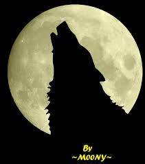 wolf and moon by moonyhellwolf on deviantart