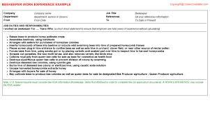 Hha Resume Samples by Beekeeper Cv Work Experience