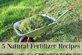 the best fertilizer for your vegetables or garden of the world u0027s