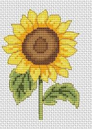 free sunflower cross stitch chart amanda gregory cross stitch