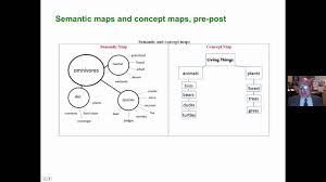 Semantic Map Vocabulary Visual Displays And Graphic Organizers Youtube
