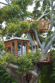 For A Tree 424 Best Cool Tree Houses Images On Tree Houses