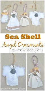 sea shell ornaments or gift accessory at home with the