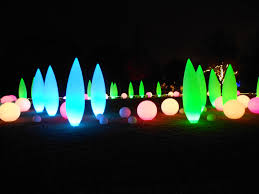 Botanical Gardens Atlanta Christmas Lights by Jeffery Mccullough U0027s Under A Southern Influence Great American