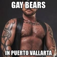 Gay Bear Meme - gay bears in puerto vallarta gay bear meme generator