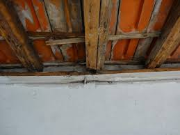 repair fixing at least temporarily roof damaged wooden beam