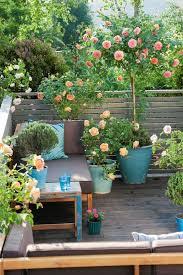 small balcony garden ideas and tips houz buzz