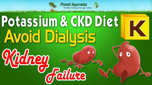 potassium and ckd diet avoid dialysis u0026 kidney failure youtube