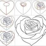 step by step drawing flowers rose best 25 how to draw flowers