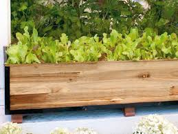 What To Plant In Window Flower Boxes - growing salad greens in window boxes hgtv