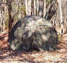 Blind Turtle Prices Big Game Treestands The Quantum Blind Sports In The Uae See