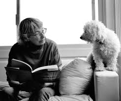 how to write a reflection paper on an interview mary oliver listening to the world on being
