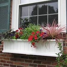 amazon com cape cod window box 4ft white plant window boxes