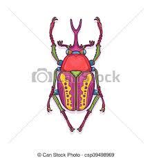 was ist das für ein insekt eine wanze oder was urlaub insekten skarabäus insekt wanze bunte käfer bunte abbildung clipart