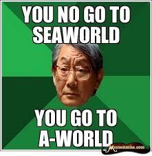 Asian Dad Memes - main qimg a464e3ee769a4c14fdc1d63d4dc26ee2 c convert to webp true
