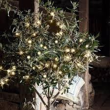 accessories clear bulbs white tree lights with