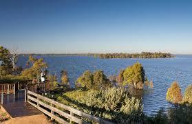 yanga lake viewing deck nsw national parks