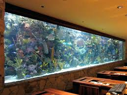 Aquarium Decor Ideas Excellent Living Room Interior With Aquarium Partition Looking
