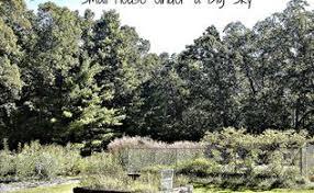 Frugal Flowers - small house under a big sky backyard feeding bed hometalk