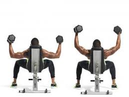 Dumbbell Exercises Chest No Bench - dumbbell chest workout no bench u2013 guiler workout