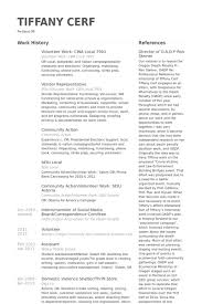 Resume Volunteer Examples by Resume Volunteer Work Sample Social Work Resume Examples 12