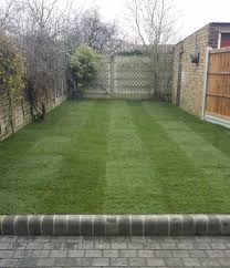 lawncare again with new issues gardening forum