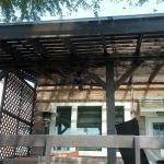ideas design polycarbonate covered pergola perspex roof