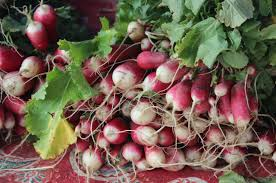 Cherry Point Farm Market by Chefs Are Changing How Farmers U0027 Markets Operate U2014 But Is It For