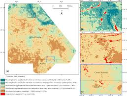 africa map study land free text mapping vegetation morphology types in