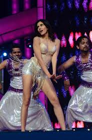 srk deepika and other stars perform at umang police show