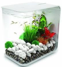 Home Aquarium Decorations Modern Aquarium Decoration Google Search My Dream Home
