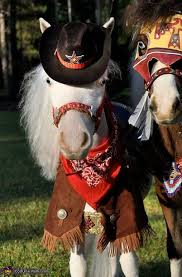 Halloween Costumes Horse 120 Horse Costumes Images Horses Costume