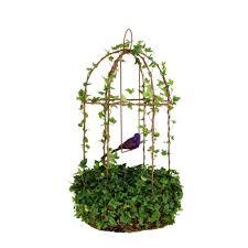 ivy indoor plants garden plants u0026 flowers the home depot
