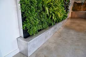 garden wall plants plants on walls vertical garden systems