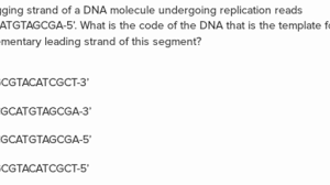 eukaryotic gene transcription going from dna to mrna article